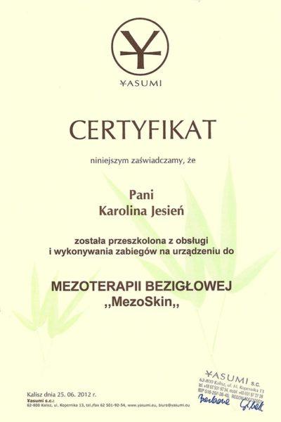 CERT_Yasumi_MezoterapiaBeziglowa_MezoSkin_2012_575415
